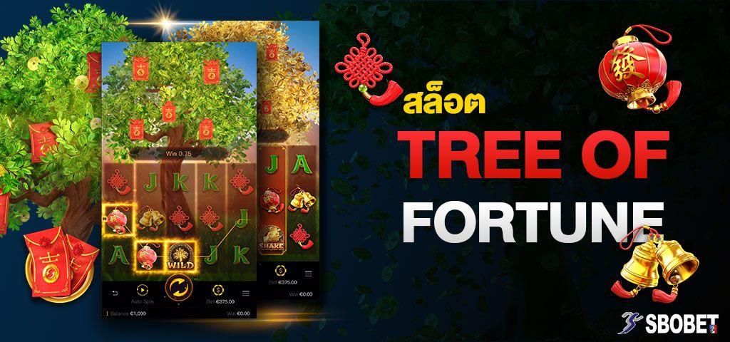 ต้นไม้แห่งโชค Tree of Fortune สล็อตล่าโบนัสแห่งโชคลาภบน SBOBET